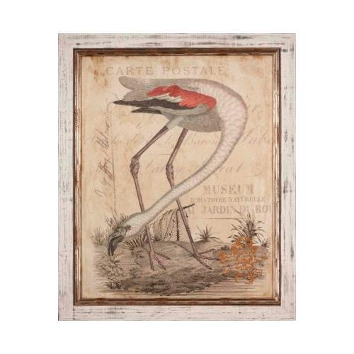 The Ashton Company - Flamingo