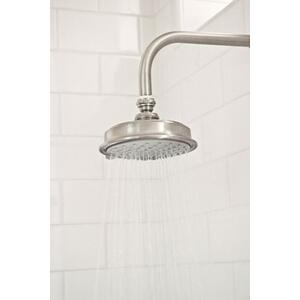 Uncoated-Polished-Brass-Living Single Function Shower Head