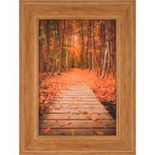 See Details - Woodland Path