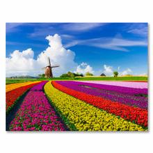See Details - Tulips In Holland Fine Wall Art On Tempered Glass Su 82029