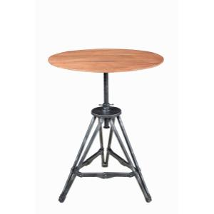 Accentrics Home - Metal / Wood Accent Table