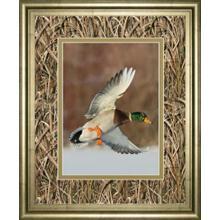 """Flying Mallard"" By Steve Oehlenschlager Mossy Oak Native Living Framed Print"