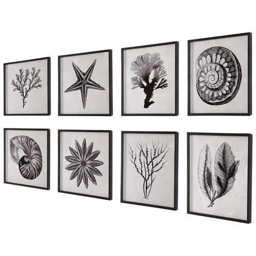 Sea Living Framed Prints, S/8