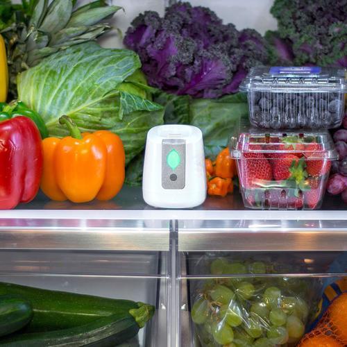 pureAir FRIDGE Refrigerator Purification