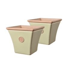 Dahlia - 2 pc Planter Set Square