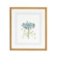 See Details - Bl Floral W/ribbon-d
