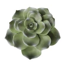 "Polyresin 8"" Succulent Wall Decor, Green Wb"