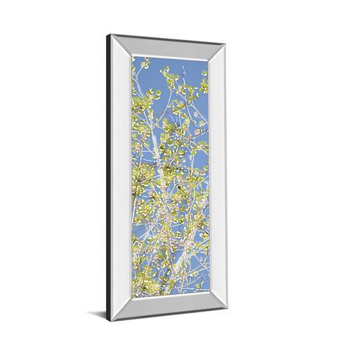 "Classy Art - ""Spring Poplars Il"" By Sharon Chandler Mirror Framed Print Wall Art"