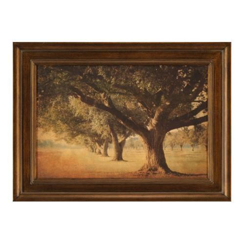The Ashton Company - Island Oak
