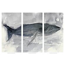 Blue Whale Triptych (S/3)