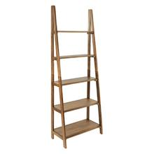 Bandon Ladder Bookcase In Ginger Brown