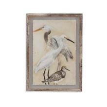 Watercolor Waterbirds II