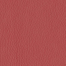 See Details - Lipstick