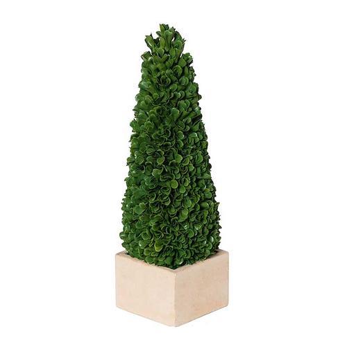 Topiary Tree S