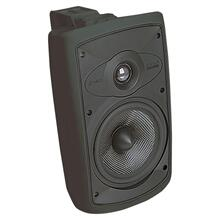 Black, Indoor/Outdoor Loudspeaker; 6-in. Carbon Woofer 2-Way-Black OS6.5 - Black