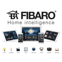 See Details - Fibaro Integration
