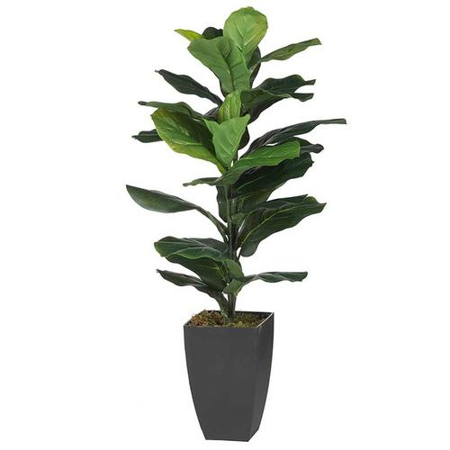 A & B Home - Potted Fiddle-Leaf Fig Plant