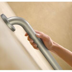 "Moen Home Care peened 42"" concealed screw grab bar"