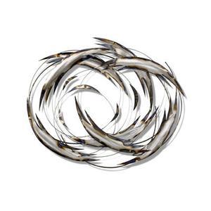 Artisan House - Tail Spin