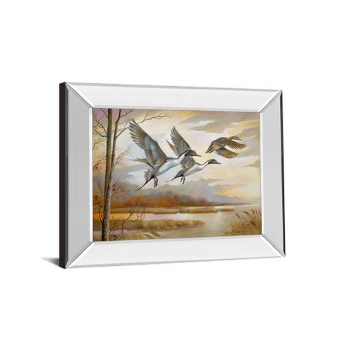 """Pintails Mirror Framed Print Wall Art"
