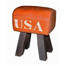 "Leather ""USA"" Stool"