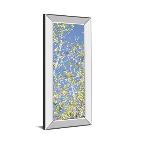 """Spring Poplars III"" By Sharon Chandler Mirror Framed Print Wall Art"