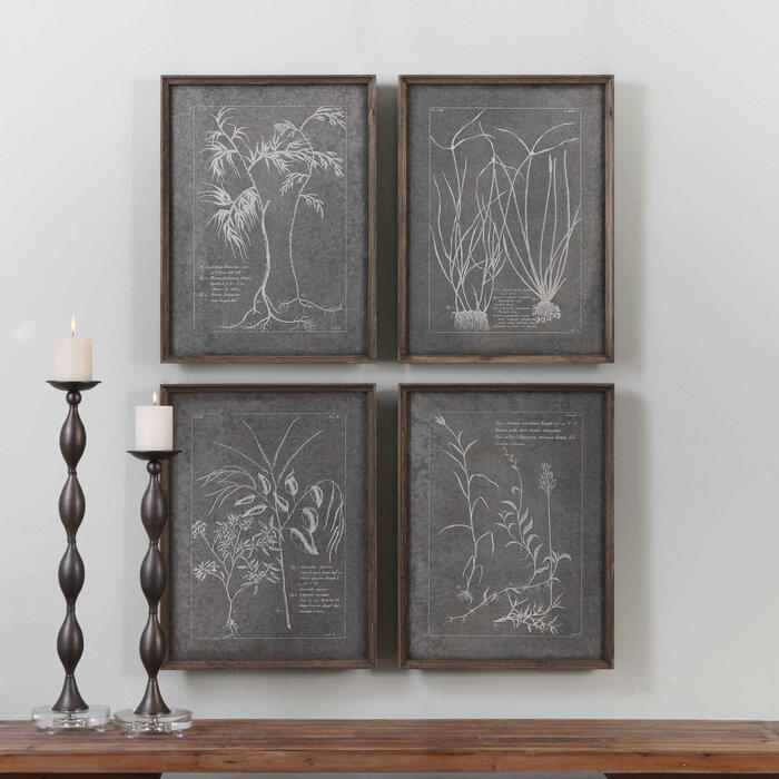 Uttermost - Root Study Framed Prints, S/4