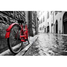 Red Bicycle (small)(framed)