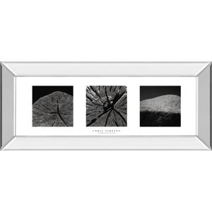 """Elements Of Nature 2"" By Chris Simpson Mirror Framed Print Wall Art"