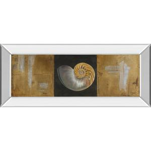 """Seashells Il"" By Patricia Pinto Mirror Framed Print Wall Art"