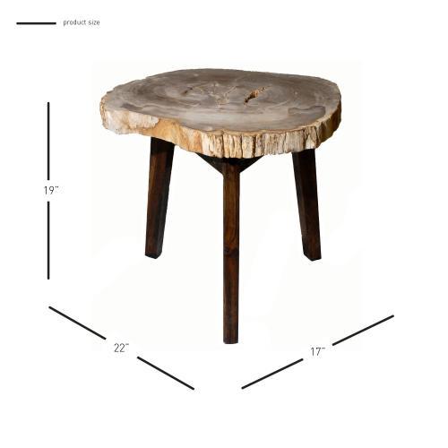 Zandra Petrified Side Table Washed Black Legs, Natural