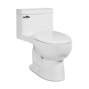 White RIOSE One-Piece Toilet Product Image