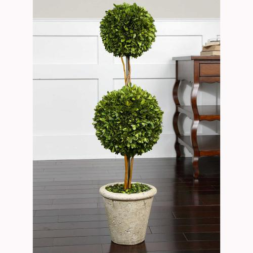 Preserved Boxwood Two Sphere Topiary