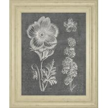 """Eden Springs 1 Gray"" By Wild Apple Portfolio Framed Print Wall Art"