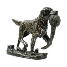 Dark Bronze Golden Retriever Dog