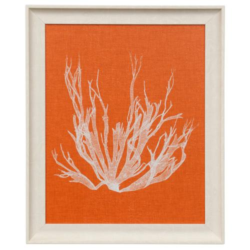 Style Craft - SEAWEED POP I  19in w X 23in ht  Made in USA  Textured Framed Print