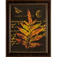 Forest Ferns Iii- 16x12