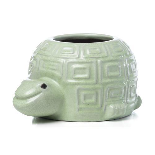 Happy Turtle (4/carton)