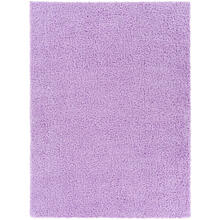 Bliss shag BLI-2307 2' x 3'