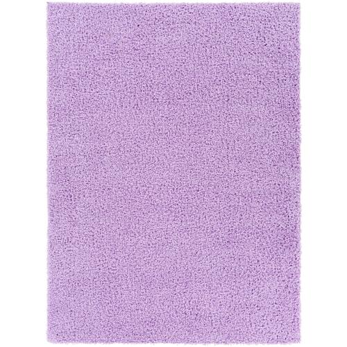 "Bliss shag BLI-2307 6'7"" x 9'"