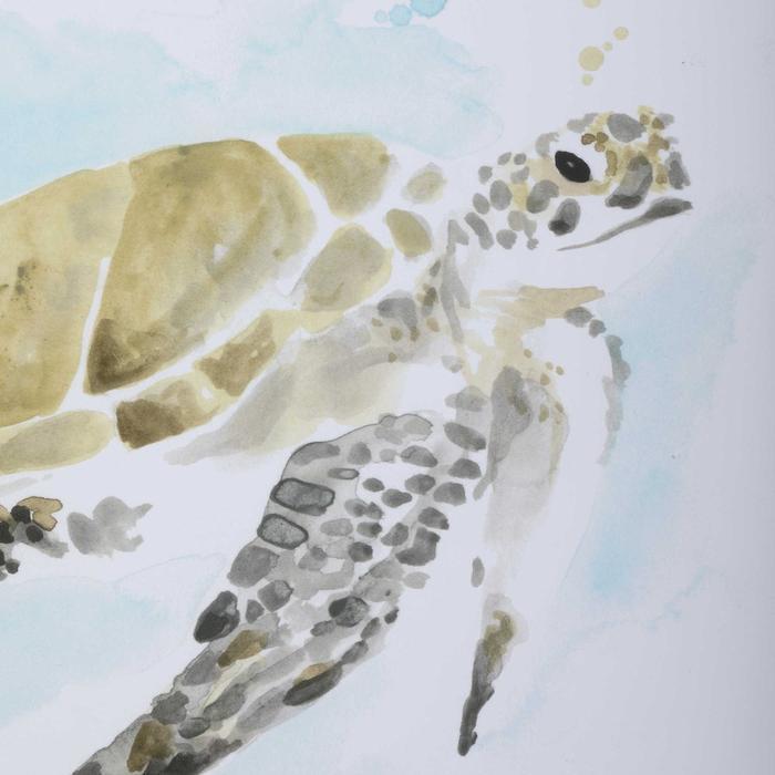 Uttermost - Sea Turtle Study Framed Prints, S/2