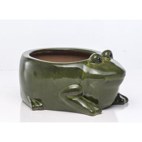 Content Toad Planter (Min 2 pcs)