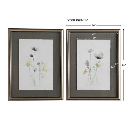 Stem Illusion Framed Prints, S/2