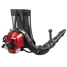 Gas Powered Backpack Leaf Blower  Snapper