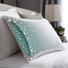 View Product - Hotel Touch of Down Twin Pack Pillow Standard/Queen