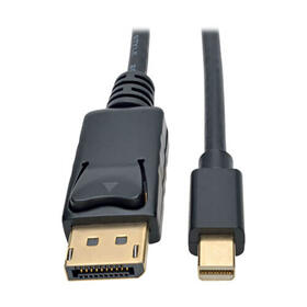 Mini DisplayPort to DisplayPort 4K @ 60 Hz Cable Adapter (M/M), Black, 6 ft. (1.83 m)