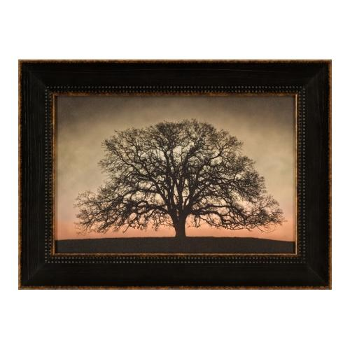 The Ashton Company - Majestic Oak