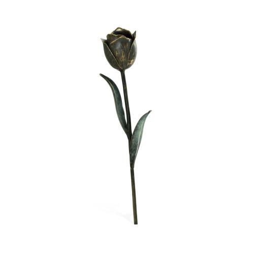 Dark Bronze Tulip Flower