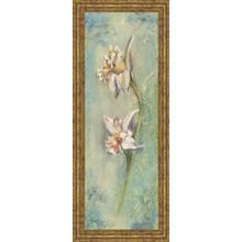 """Floral XIl"" By Lee Hazel Framed Print Wall Art"