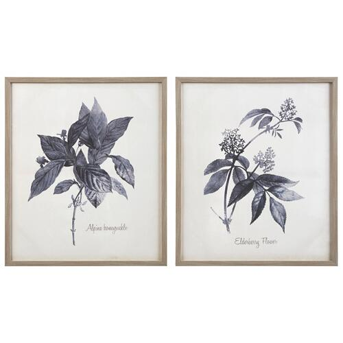 Efren Wall Art (set of 2)